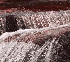 I fiumi di porpora